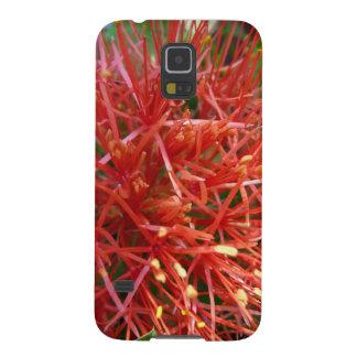 Flor azucena de bola de fuego, Samsung Galaxy S5 f Carcasa De Galaxy S5