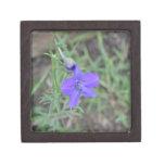flor azul cajas de joyas de calidad