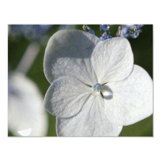 """Flor azul claro con gota de lluvia invitación 4.25"""" x 5.5"""""""