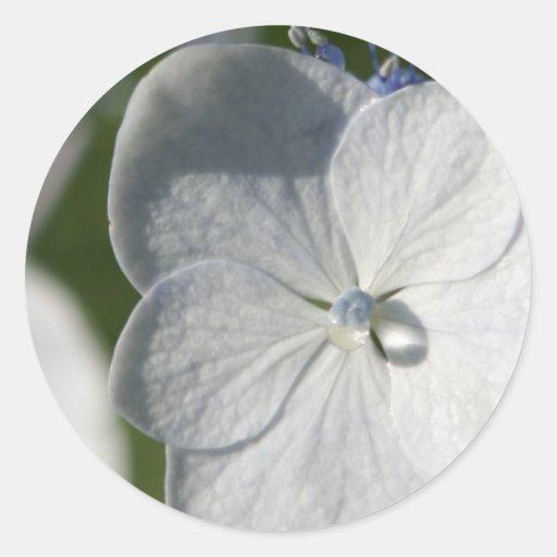 Flor azul claro con gota de lluvia pegatina redonda