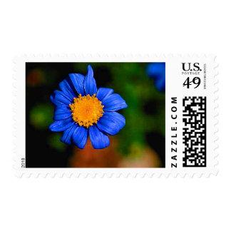 Flor azul con el centro amarillo sellos