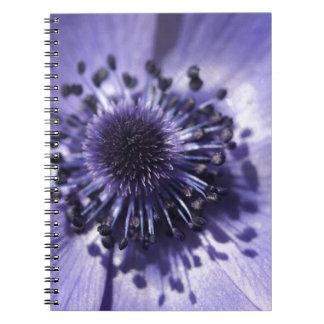 Flor azul de la anémona del bígaro libretas