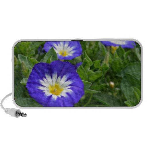 Flor azul de la correhuela de la bandera laptop altavoces