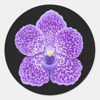 Flor azul de la orquídea de Vanda Pegatina Redonda