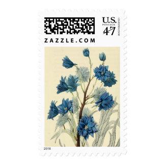 Flor azul de Larkspur del vintage Estampillas