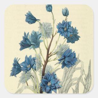 Flor azul de Larkspur del vintage Pegatina Cuadrada