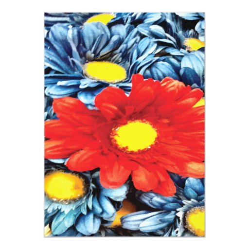 """Flor azul de las margaritas anaranjadas de la invitación 5"""" x 7"""""""