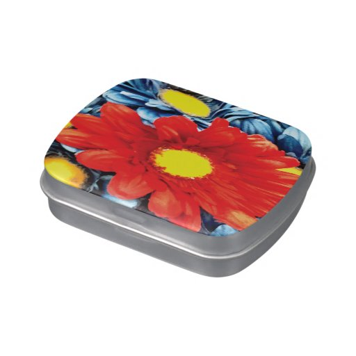 Flor azul de las margaritas anaranjadas de la marg