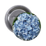 Flor azul del Hydrangea Pins