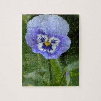Flor azul del pensamiento rompecabezas