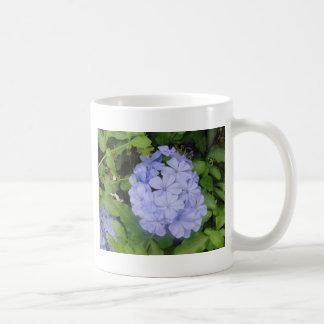 Flor azul del racimo taza