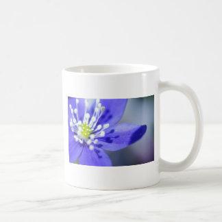 Flor azul hermosa taza