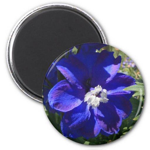 Flor azul imán redondo 5 cm