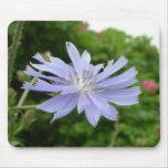 Flor azul Mousepad Alfombrillas De Ratón