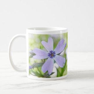 Flor azul perfecta del Phlox del arrastramiento Taza