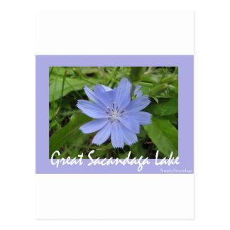 Flor azul postales