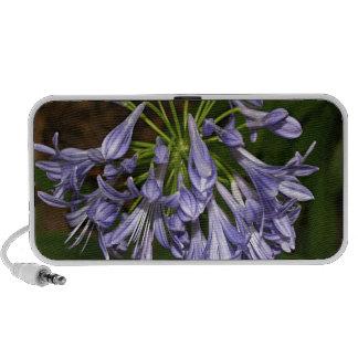 Flor azul púrpura del agapanthus en la floración mp3 altavoces