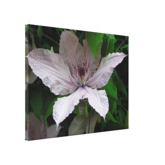 flor bellísima, impresionante, impresiones en lienzo estiradas