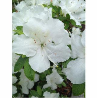 """Flor blanca 2"""""""" Pin x3 Pin Fotoescultura"""
