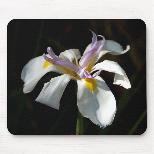 Flor blanca alfombrilla de raton