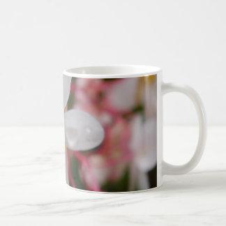 Flor blanca con descensos de rocío taza