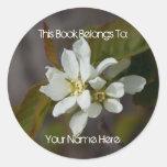Flor blanca con la hormiga etiquetas redondas