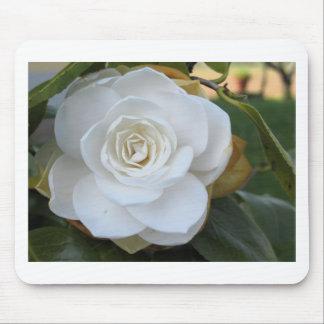 Flor blanca de la camelia en primavera tapetes de ratón