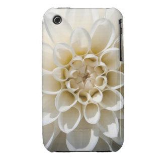 Flor blanca de la dalia iPhone 3 Case-Mate carcasa