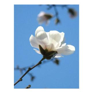 Flor blanca de la magnolia del papel del libro de  membrete a diseño
