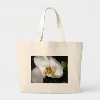 Flor blanca de la orquídea bolsa lienzo