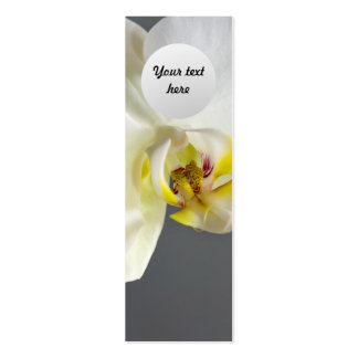 Flor blanca de la orquídea tarjetas de visita mini