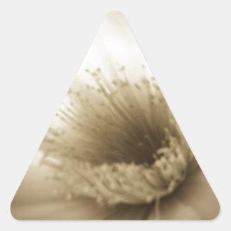 Flor blanca de la sepia pegatina triangular