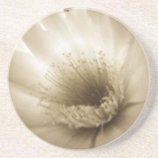 Flor blanca de la sepia posavasos manualidades