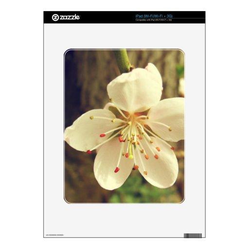 Flor blanca del árbol calcomanías para iPad