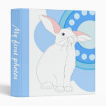 Flor blanca del conejo y del azul