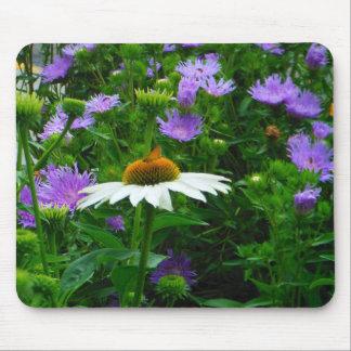 Flor blanca del cono flores púrpuras y polilla