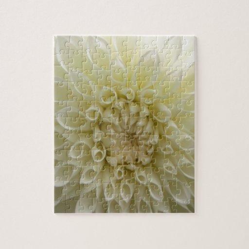 Flor blanca del crisantemo puzzle