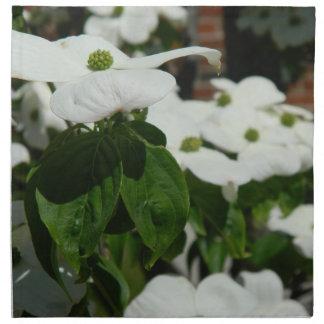 Flor blanca del Dogwood Servilletas
