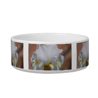 Flor blanca del iris y su significado comedero para mascota