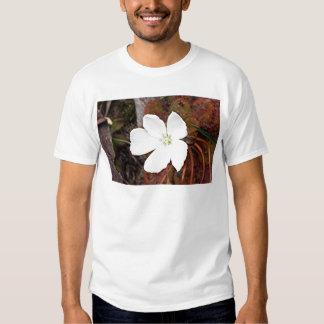 Flor blanca del sundew en la floración remeras