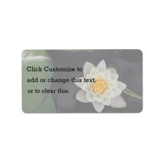 Flor blanca en una charca etiquetas de dirección