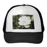 Flor blanca gorra