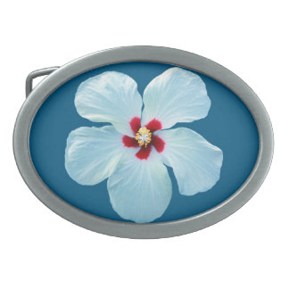 Flor blanca hermosa del hibisco en azul hebilla de cinturón