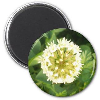 Flor blanca imán redondo 5 cm