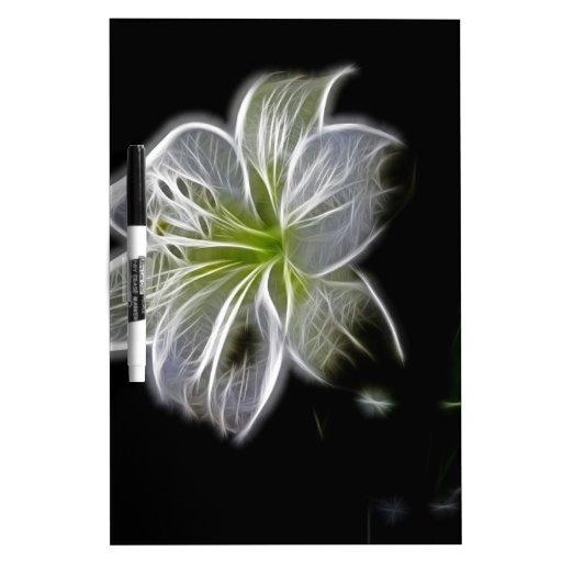 Flor blanca intrépida, pero delicada pizarras blancas de calidad