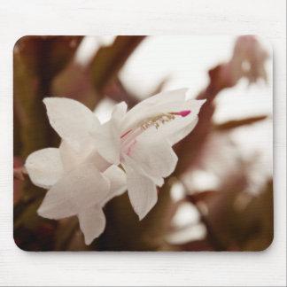 Flor blanca mouse pads