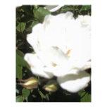 Flor blanca plantilla de membrete