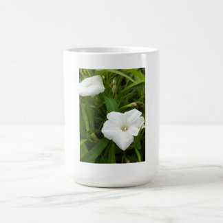 Flor blanca pura taza