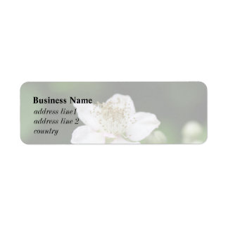 Flor blanca salvaje de la frambuesa etiqueta de remite