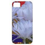 Flor blanca salvaje de Lilly:  Mundo asombroso de  iPhone 5 Case-Mate Cobertura